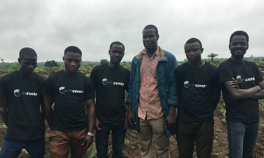 Farmcenta Role in the Agricultural Sector in Nigeria