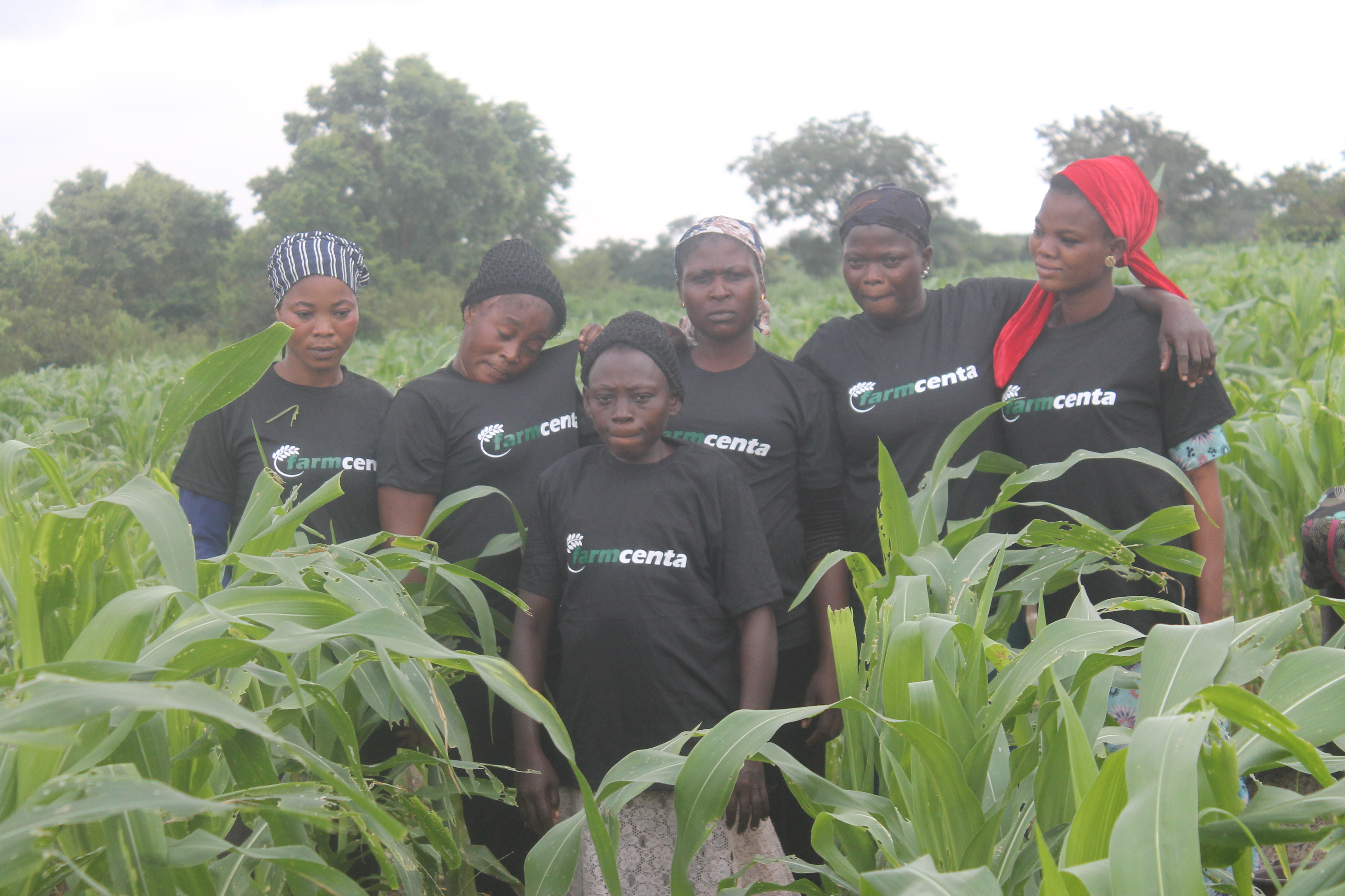 The impact of Women in Nigerian Agriculture