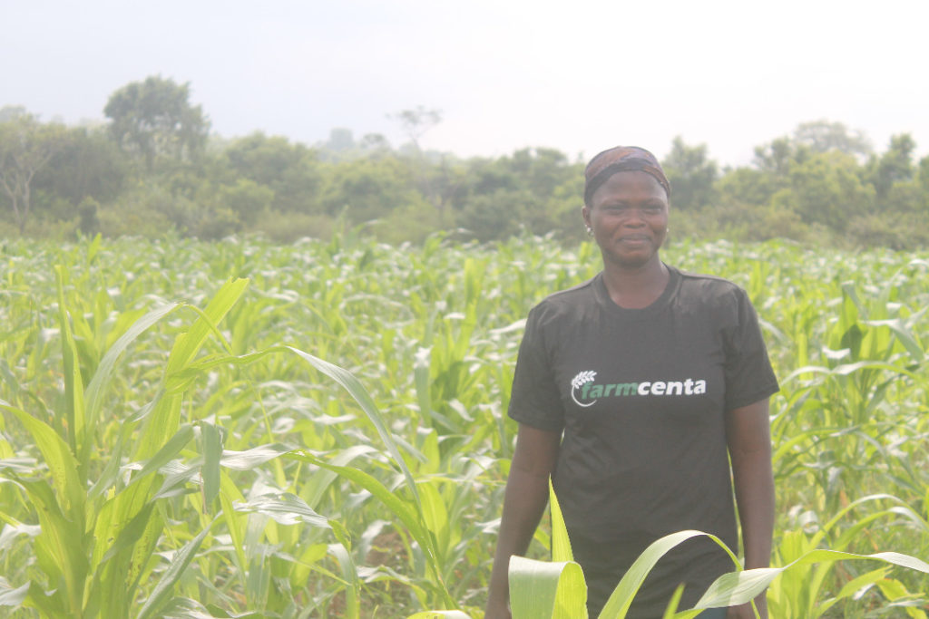 farmcenta, one of the top agric-tech companies in Nigeria