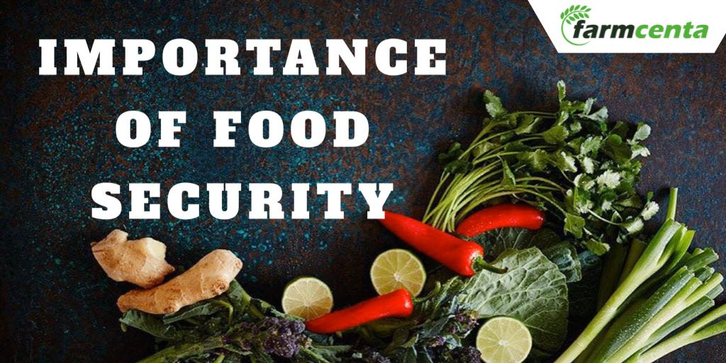 Importance of Food Security In Nigeria