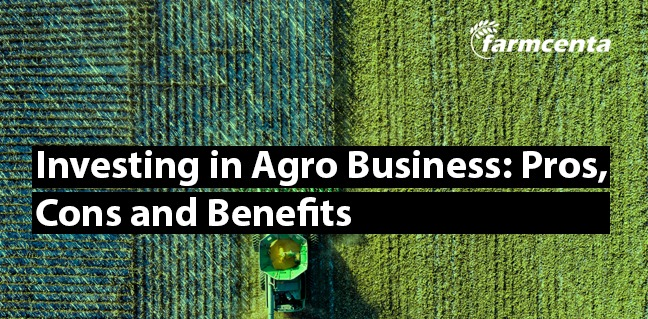Investing In Agro-Business: Pros, Cons, and Benefits