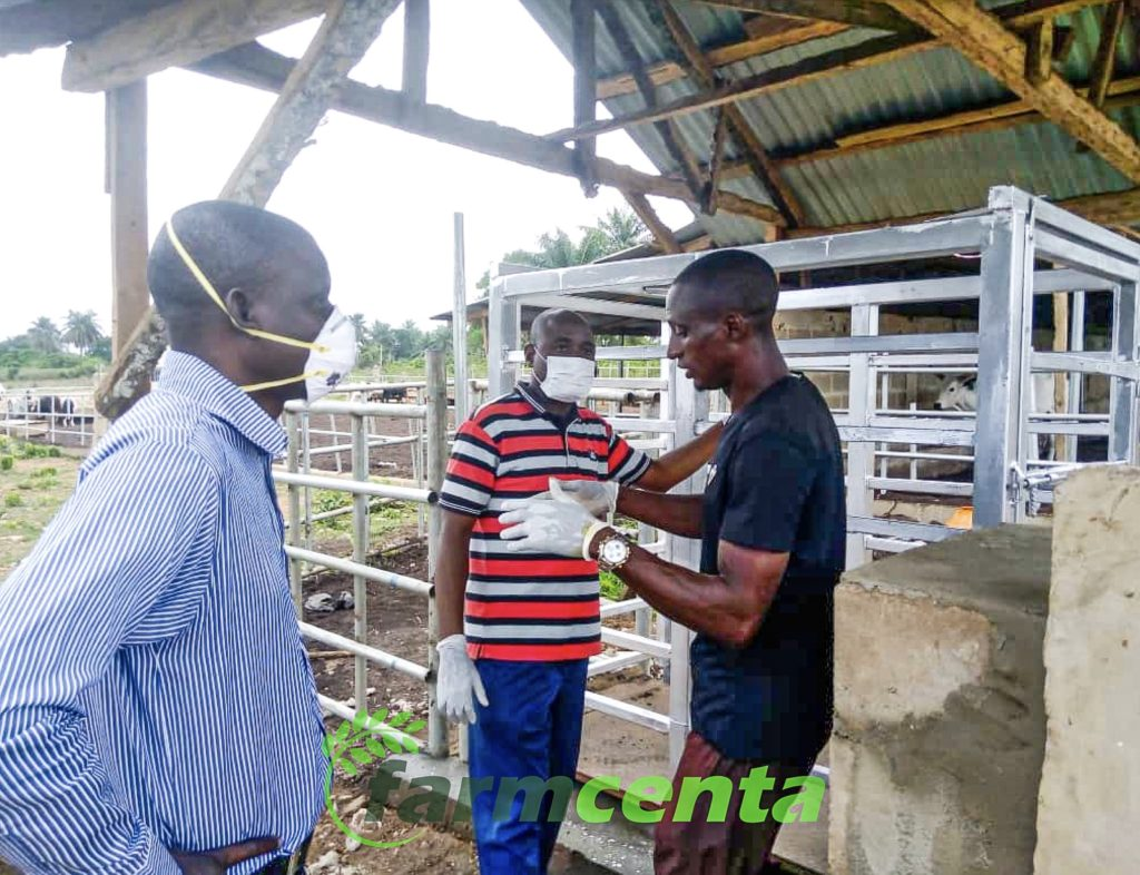 Friesland officials visit the farmcenta cattle ranch for assessment